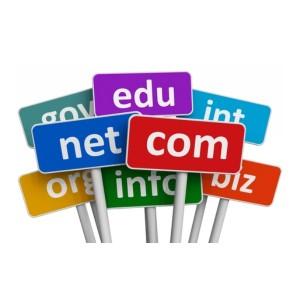 registro-dominio-dablumen-com2